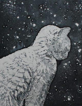 Camilla Fanning, Snow Cat