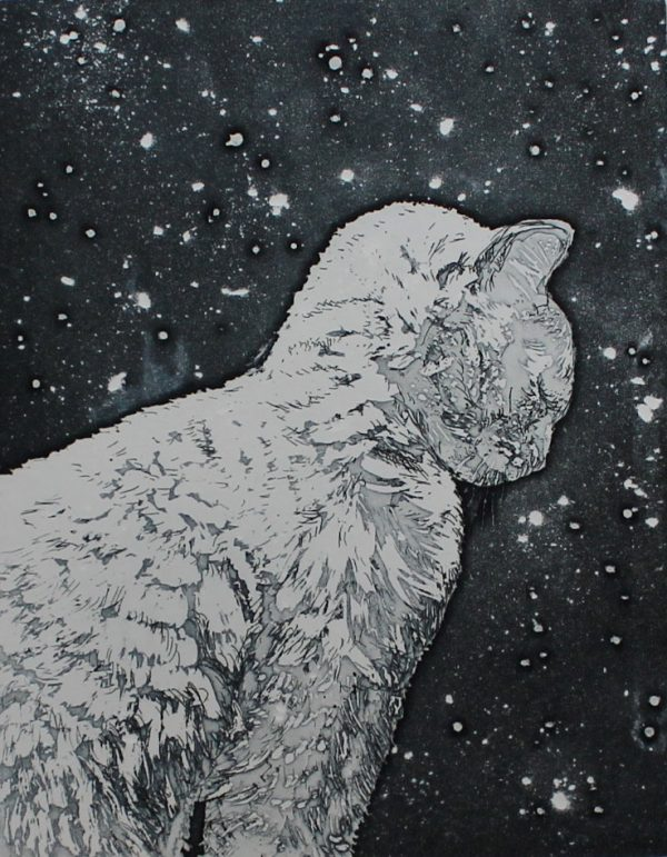Camilla Fanning, Snow Cat