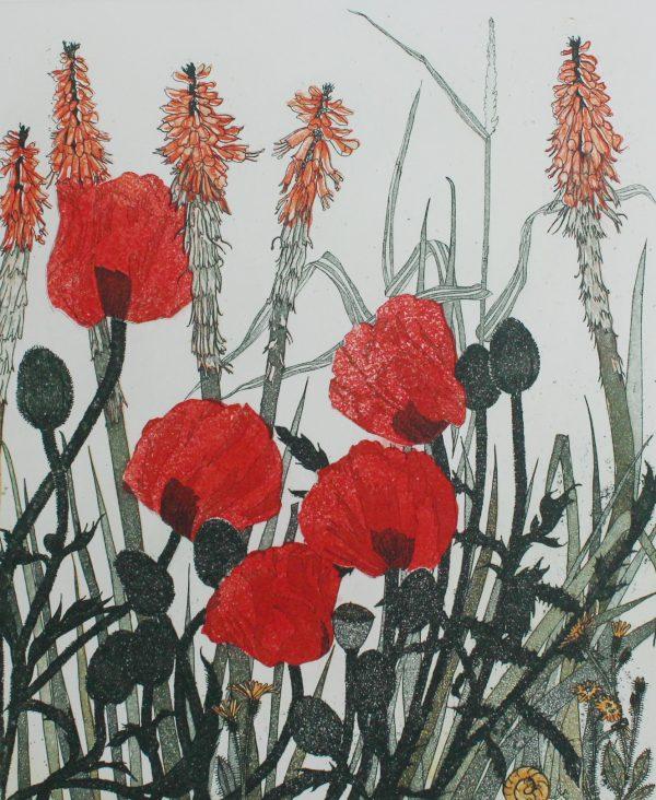 Graphic Studio Dublin: Poppies