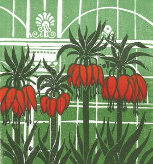 Anderson Anne, Fritillaria Imperialis
