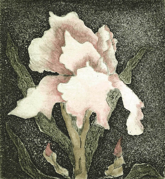 Becker Margaret, Botanical Bloom