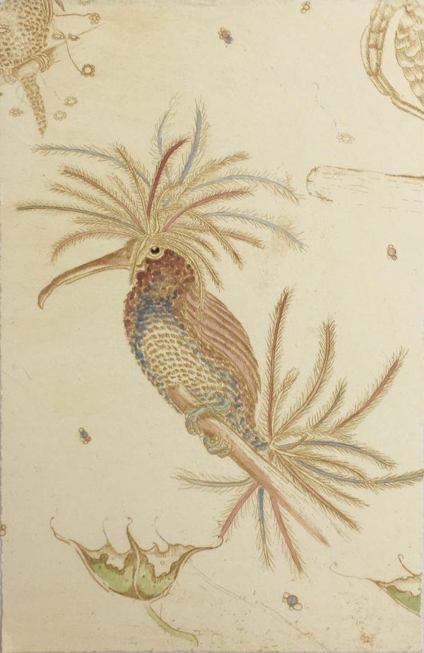 Blue + Red Anemone Bird, Melissa Ellis