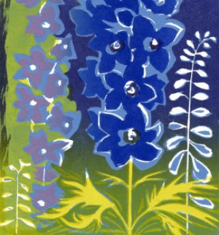 Delphinium Blue, Catherine Thompson
