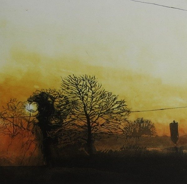 Golden Sunrise over Oxley's field, Geraldine O'Reilly
