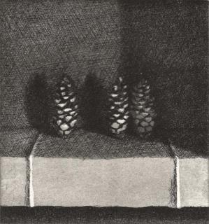 Pine Cones, Raphael Hynes