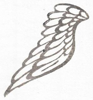 Taxus Baccata, Piia Rossi