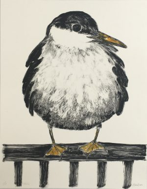 Graphic Studio Dublin •Renate Debrun: Tern