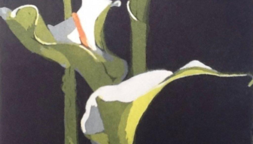 Arum Lilies, Nicola Lynch Morrin