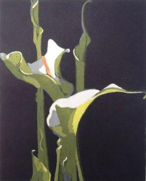 Graphic Studio Dublin •Nicola Lynch Morrin: Arum Lilies, Nicola Lynch Morrin
