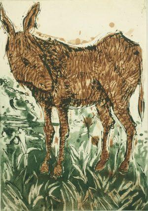 Graphic Studio Dublin •John Behan: Donkey, John Beahn