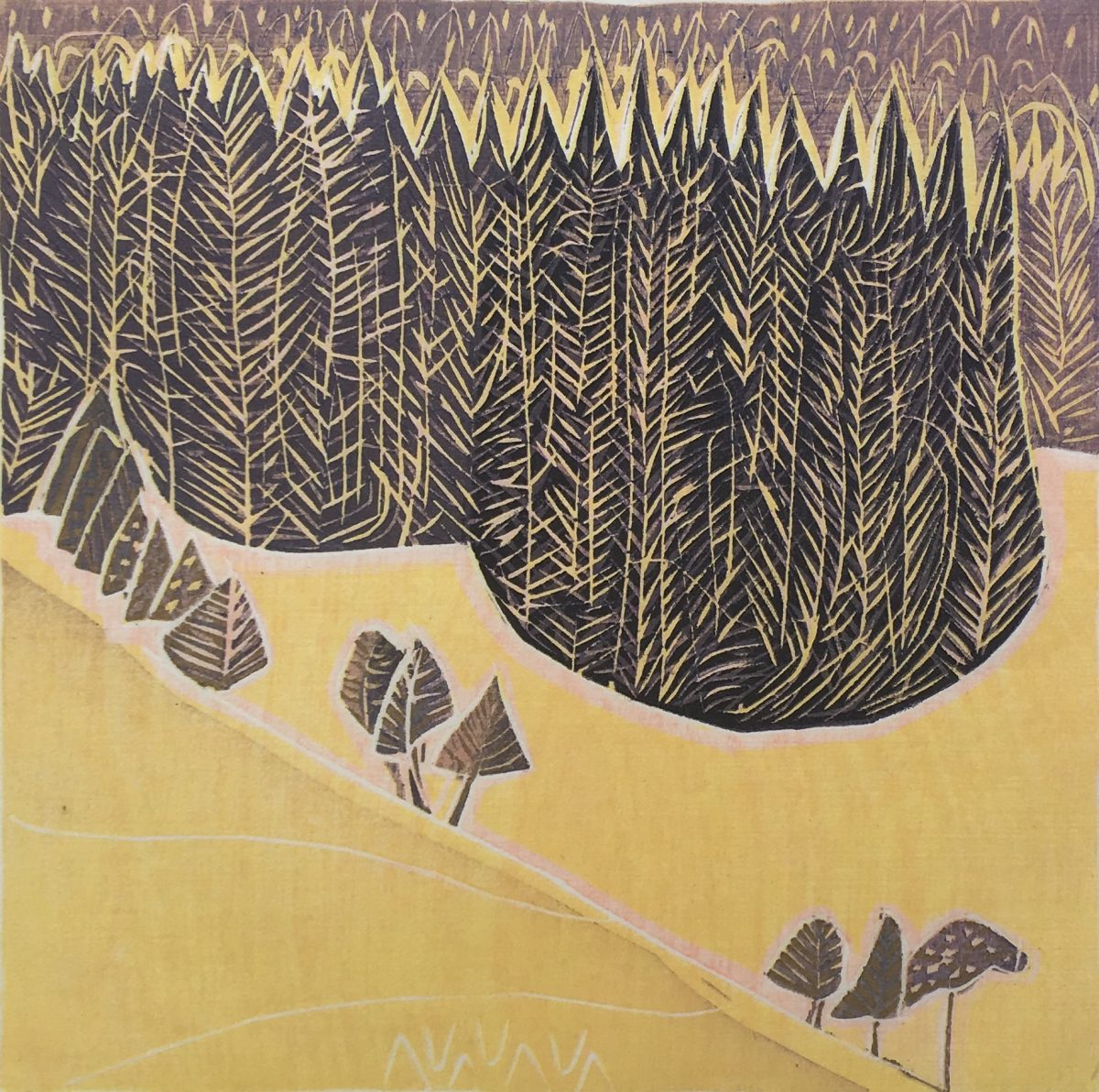 Mountain Forest, Jennifer Lane