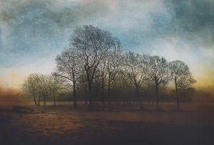 Graphic Studio Dublin •Robert Russell: Tree Line, Robert Russell