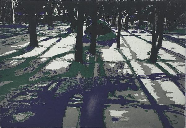Winter Shadows, Dermott Ryan