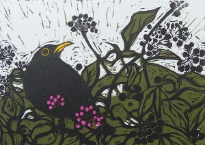 Graphic Studio Dublin • Mary Grey: Title: Blackbird Medium: Linocut Edition Number: 15 Paper size: h 28 cms w 33 cms Image Size: h 15 cms w 21 cms Unframed Gallery selling price: 140 euro Precise cost of frame to me: 65 euro