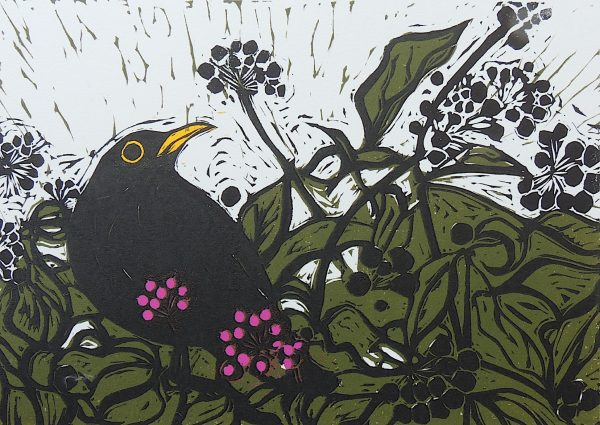 Title: Blackbird Medium: Linocut Edition Number: 15 Paper size: h 28 cms w 33 cms Image Size: h 15 cms w 21 cms Unframed Gallery selling price: 140 euro Precise cost of frame to me: 65 euro