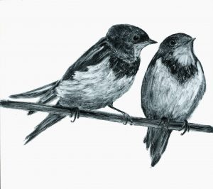 Renate DeBrun, two swallows