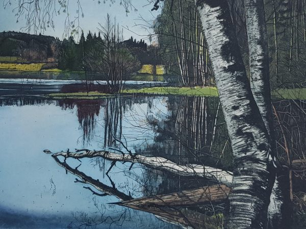 Graphic Studio Dublin: Still waters run deep, Louise Leonard