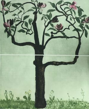 Graphic Studio Dublin •Cliona Doyle: Graphic Studio Dublin: Magnolia  Soulangeana