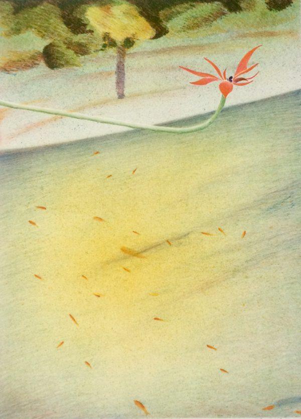 Graphic Studio Dublin: James McCreary, Goldfish and Flower