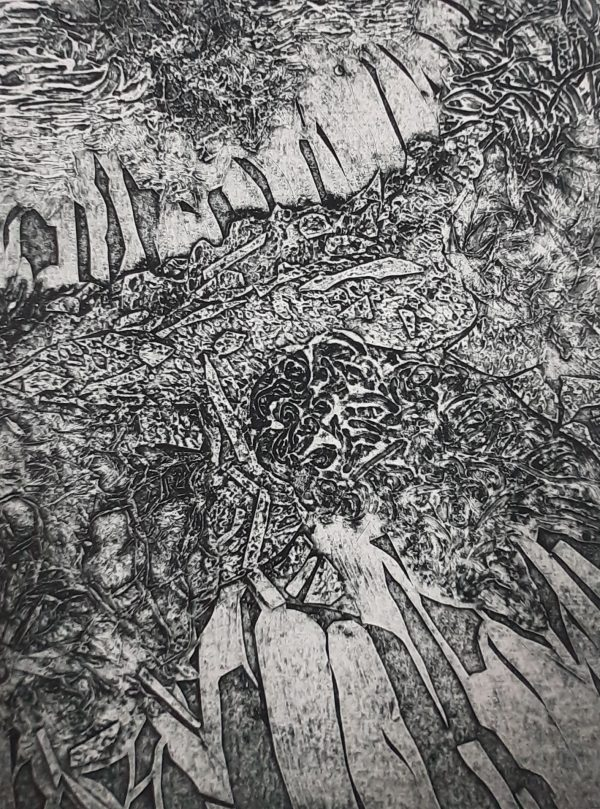 Josie McMorrin, Coastal Pattern