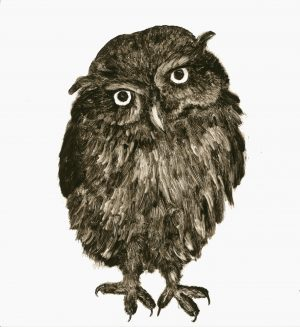 Renate Debrun, Young Owl