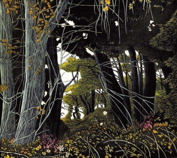 Graphic Studio Dublin: Pamela Leonard, Summer Foliage