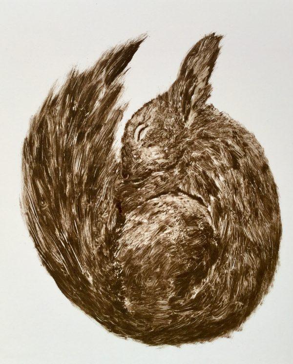 Renate Debrun, Hibernation