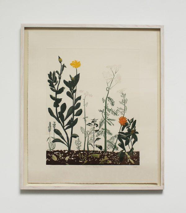Cliona Doyle, Burren Herbgarden