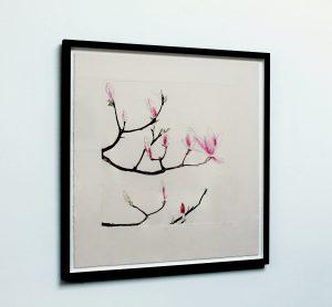 Graphic Studio Dublin •Cliona Doyle: Cliona_Magnolia2