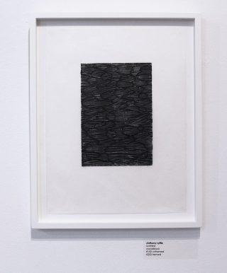 Anthony Lyttle, Untitled 5