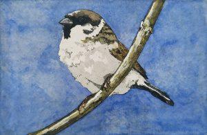 Graphic Studio Dublin •Barry Meskell: Graphic Studio Dublin: Sparrow