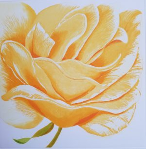 Graphic Studio Dublin • Grainne Cuffe: Grainne Cuffe_A Golden Rose_ etching