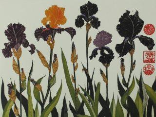Jean Bardon, Flag Irises
