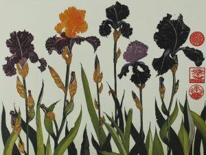 Graphic Studio Dublin •Jean Bardon: Flag Irises