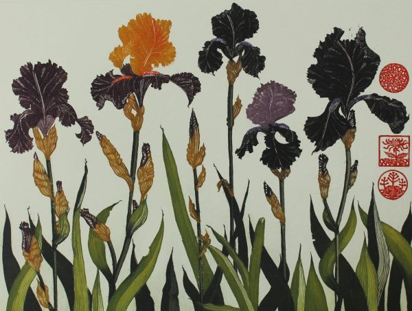 Jean Bardon, Flag Irises
