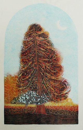 Jenny-Lane-Sequoia copy