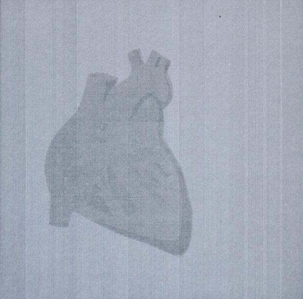 Graphic Studio Dublin: interior heart - earthier intro