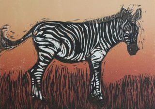 Mary Grey, Zebra
