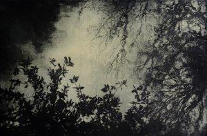 Graphic Studio Dublin •Nancy Previs: Nancy_Previs_Harmonious_Rhythm_ll