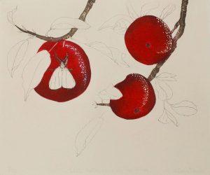 Graphic Studio Dublin •Cliona Doyle: Graphic Studio Dublin: White Moths were on the wing