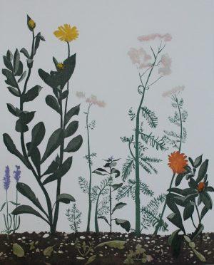 Graphic Studio Dublin •Cliona Doyle: Graphic Studio Dublin: Herbgarden
