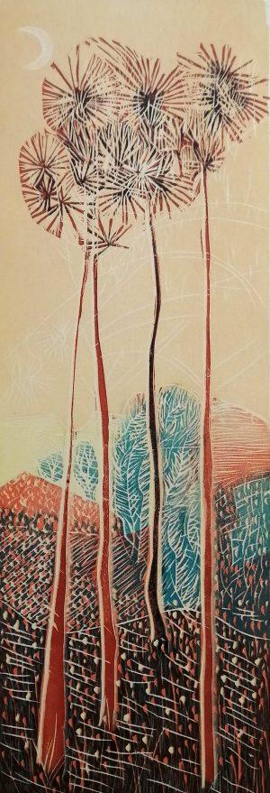 Graphic Studio Dublin •Jenny Lane: Graphic Studio Dublin: Alentejo Pine