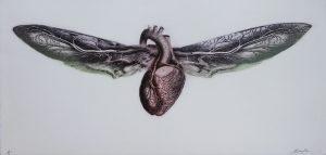 Graphic Studio Dublin •Andrew Folan: Graphic Studio Dublin: Summer Heart