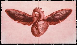 Andrew Folan, Flying Heart 2D