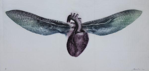 Graphic Studio Dublin: Summer Heart