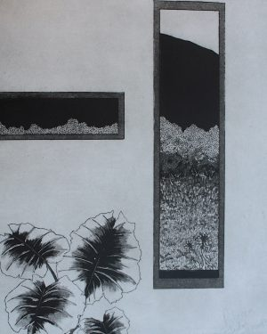 Graphic Studio Dublin: Growth