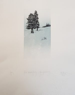 Graphic Studio Dublin • Marie-Louise Martin: Diamond Point-Marie Louise Martin-Etching & Embossing - First Snow Flurry, Annamakerrig