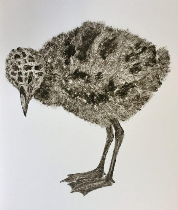 Diamond Point-Renate De Brun - Monoprint - gull chick II