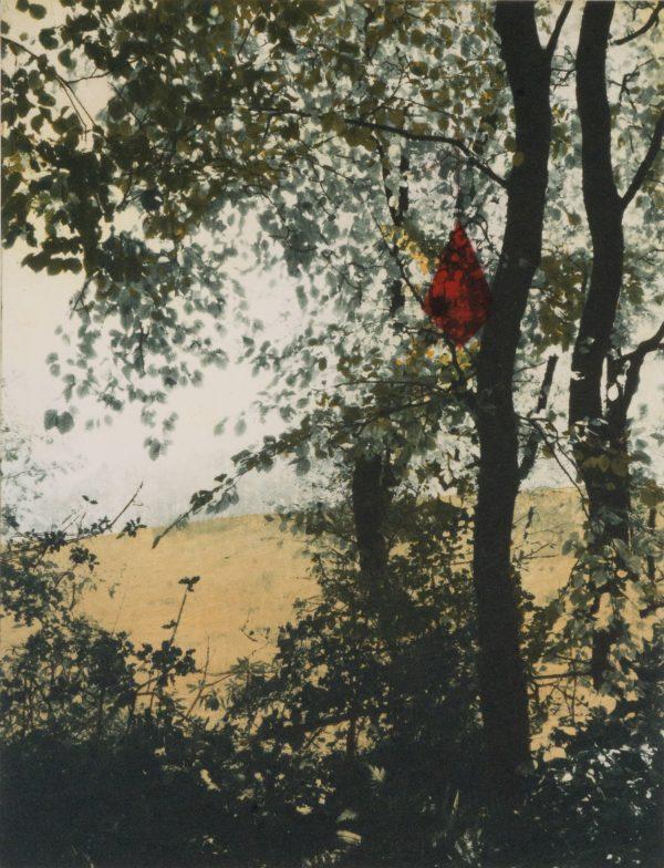 Graphic Studio Dublin: Kite in the Rough
