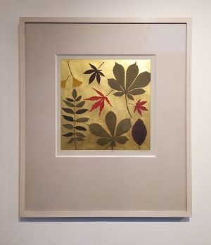 Graphic Studio Dublin •Jean Bardon: Now the leaves are falling